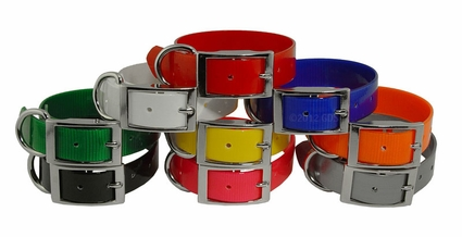 Beagle 1 in. Field Trial Dog Collar Pack