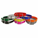 buy discount  Beagle 3/4 in. Field Trial Dog Collar Pack