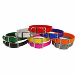shop Beagle 3/4 in. Field Trial Dog Collar Pack