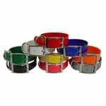 buy discount  Beagle Field Trial Dog Collar Sets