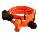 buy discount  Beeper Collars Buyer's Guide by Steve Snell