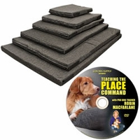 buy  Bizzy Dog Beds Crate Cushions