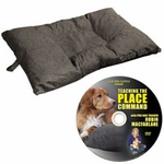shop Bizzy Dog Bed -- Jumbo