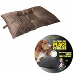 shop Bizzy Dog Bed -- Medium