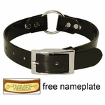 shop BLACK 1 in. Day Glow Center Ring Collar