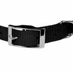 shop Black Nylon Dog Collar Front of Buckle Detail