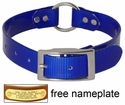 BLUE 1 in. Day Glow Center Ring Collar
