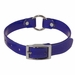 Blue 3/4 in. Center Ring Day Glow Collar - 12 inch