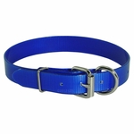 shop Blue D-End Day Glow Collar