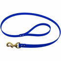 buy discount  Blue Leash