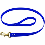 shop Blue Leash