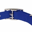 buy discount  Blue Nylon Dog Collar Back of Buckle Detail