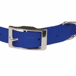 shop Blue Nylon Dog Collar Front of Buckle Detail