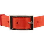 shop Orange Reflexite Collar Front of Buckle