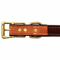 buy discount  Collar Back of Buckle Detail