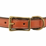 shop Collar Front of Buckle