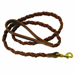 shop Coyote - Woven 5 ft. Snap Lead