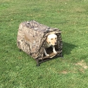 buy discount  Customer Photo: Brian's Yellow Lab in her Field House Blind