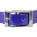 buy discount  Day Glow Center Ring Collar Front of Buckle Detail