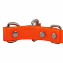 buy discount  3/4 in. Day Glow D-End Puppy/Small Buckle Inside Detail