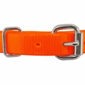 buy discount  3/4 in. Day Glow D-End Puppy/Small Collar Front of Buckle Detail