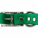 buy discount  1 in. Day Glow Standard Dog Collar Back of Buckle Detail
