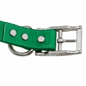 buy discount  1 in. Day Glow Standard Dog Collar Buckle Inside Detail