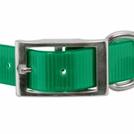 shop 1 in. Day Glow Standard Dog Collar Front of Buckle Detail
