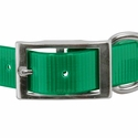 buy discount  1 in. Day Glow Standard Dog Collar Front of Buckle Detail