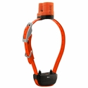 buy discount  Delta Upland XC Additional Receiver Collar - Orange