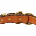 buy discount  Deluxe Leather D-end Dog Collar Back of Buckle Detail