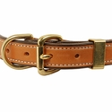buy discount  Deluxe Leather D-end Dog Collar Front of Buckle Detail