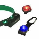 shop Dog Visibility and Tracking Lights