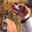 Dog Training Collars / Shock Collars