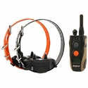buy discount  Dogtra 1902S Remote Dog Training Collar 2-dog