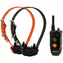 buy Dogtra 202C Remote Dog Training Collar 2-dog shock collars