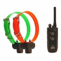 buy discount  Dogtra 2502 T&B Training and Beeper 2-dog Unit
