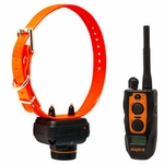shop Dogtra 2700 T&B Training and Beeper Collar