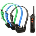 buy discount  Dogtra Edge RT Remote Training Collar System -- 3 Dog