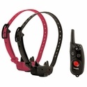 buy Dogtra iQ CliQ Remote Training Collar with Clicker 2-dog shock collars