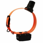 shop DT Systems BTB-800 Double Beep Baritone Beeper Collar