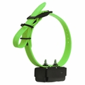 DT Systems H2O 1800 PLUS Add-On Collar with Green Strap