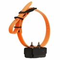 DT Systems H2O 1800 PLUS Add-On Collar with Orange Strap