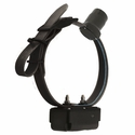 DT Systems H2O 1850 PLUS Add-On Beeper Collar with Black Strap