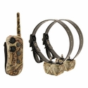 buy DT Systems R.A.P.T. 1400 Cover-Up Camo 2-Dog shock collars