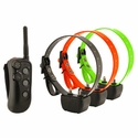 buy discount  DT Systems R.A.P.T. 1400 Remote Training Collar 3-Dog