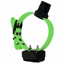 buy discount  DT Systems R.A.P.T. 1450 Upland Green Add-On Collar