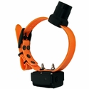 buy discount  DT Systems R.A.P.T. 1450 Upland Orange Add-On Collar