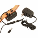buy discount  DT Systems R.A.P.T. 1450 Upland Receiver on Charger