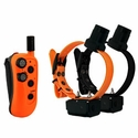 buy discount  DT Systems R.A.P.T. 1450 Upland with Beeper 2-dog Combo